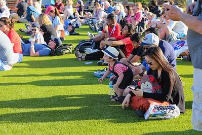 Soy-backed grass supports the heavy foot traffic of rocket-watching crowds at the Kennedy Space Center Visitor Complex in Florida. Photo credit: Raul A. Martinez of EasyGrass.
